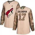 Cheap Adidas Coyotes #17 Alex Galchenyuk Camo Authentic 2017 Veterans Day Stitched NHL Jersey